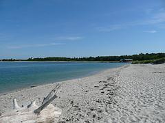 Ferry Beach, beach weddings, outdoor weddings, Maine beaches