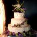 Garden wedding cake ideas, wedding cakes, garden wedding cakes, spring wedding cake ideas